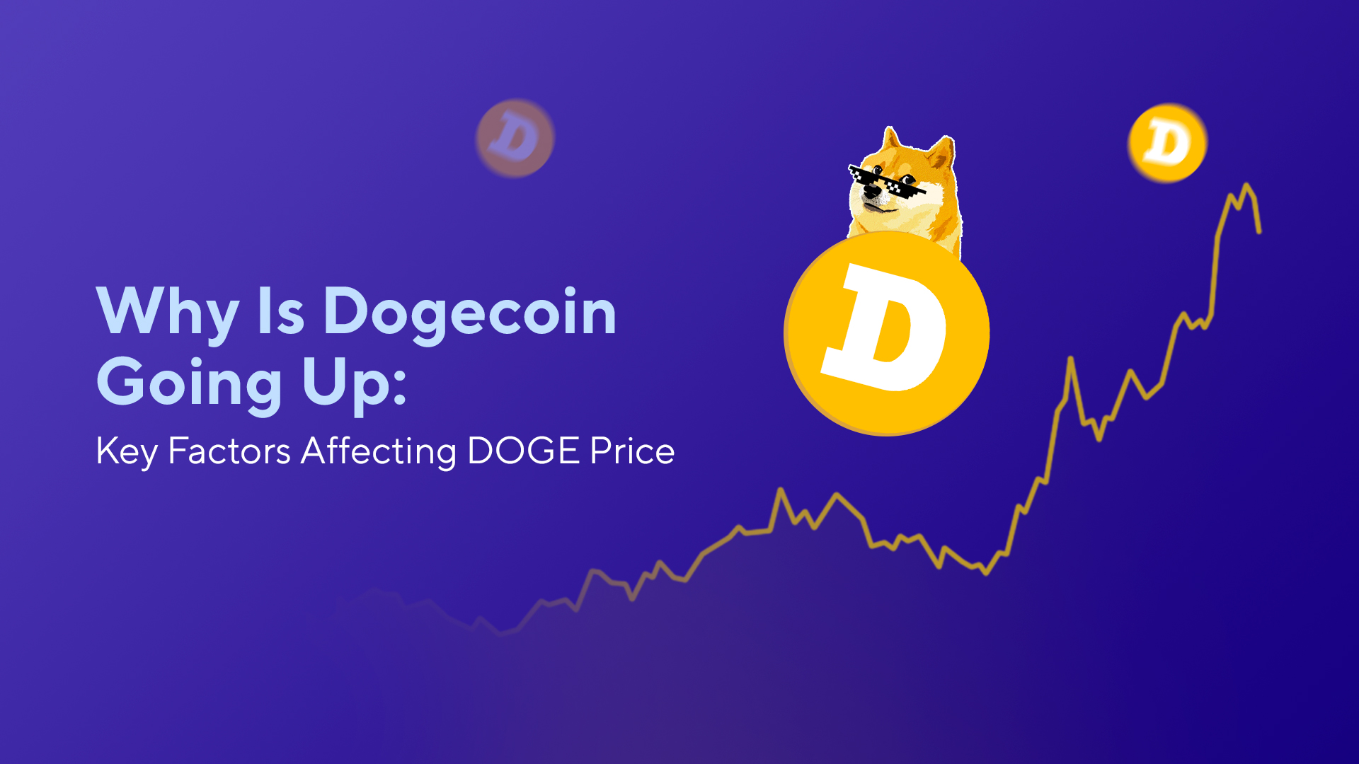 Why Is Dogecoin Going Up: Key Factors Affecting DOGE Price
