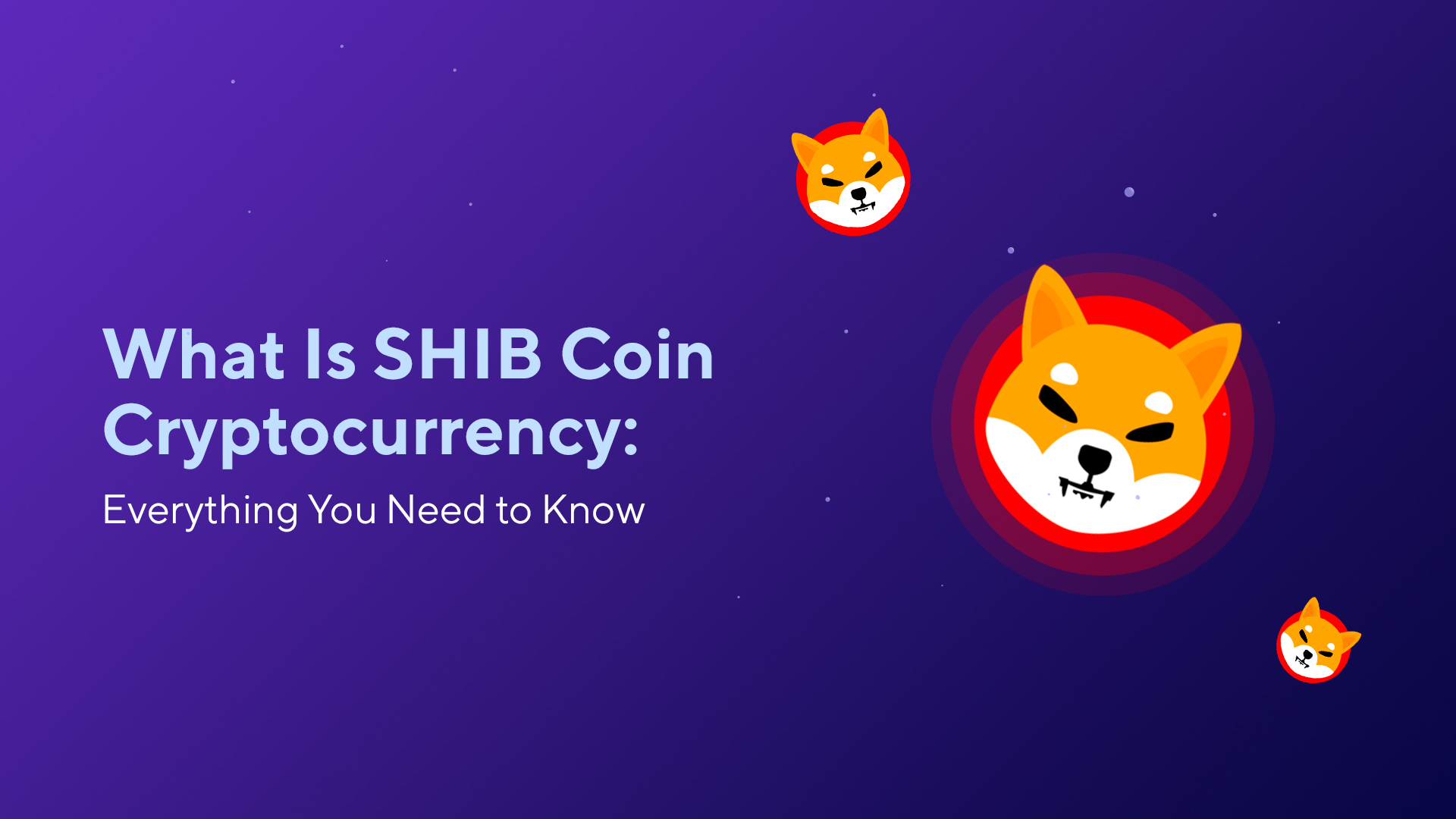 What Is SHIB Coin Cryptocurrency: Everything You Need to Know