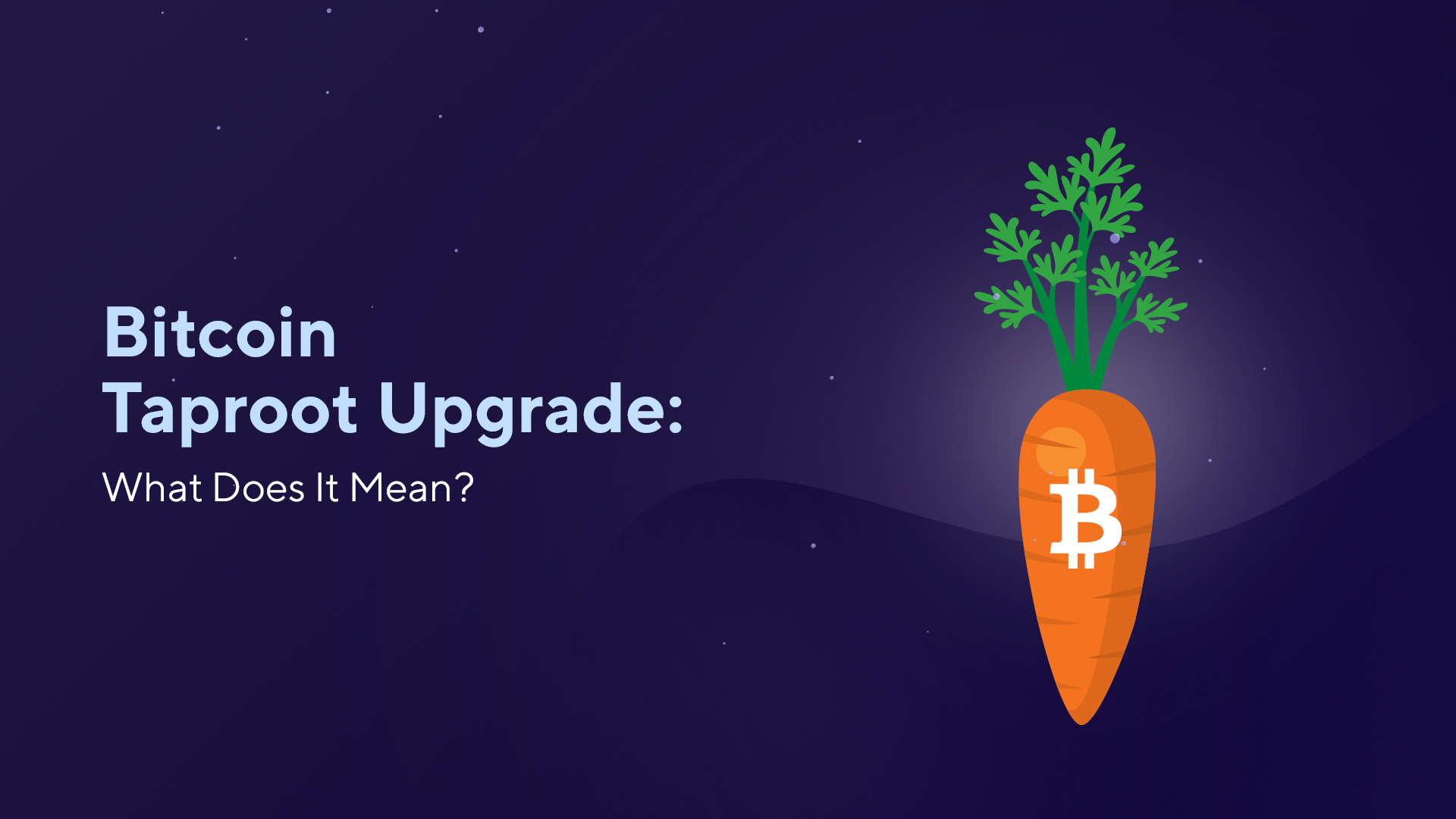Bitcoin Taproot Upgrade: What Does It Mean?