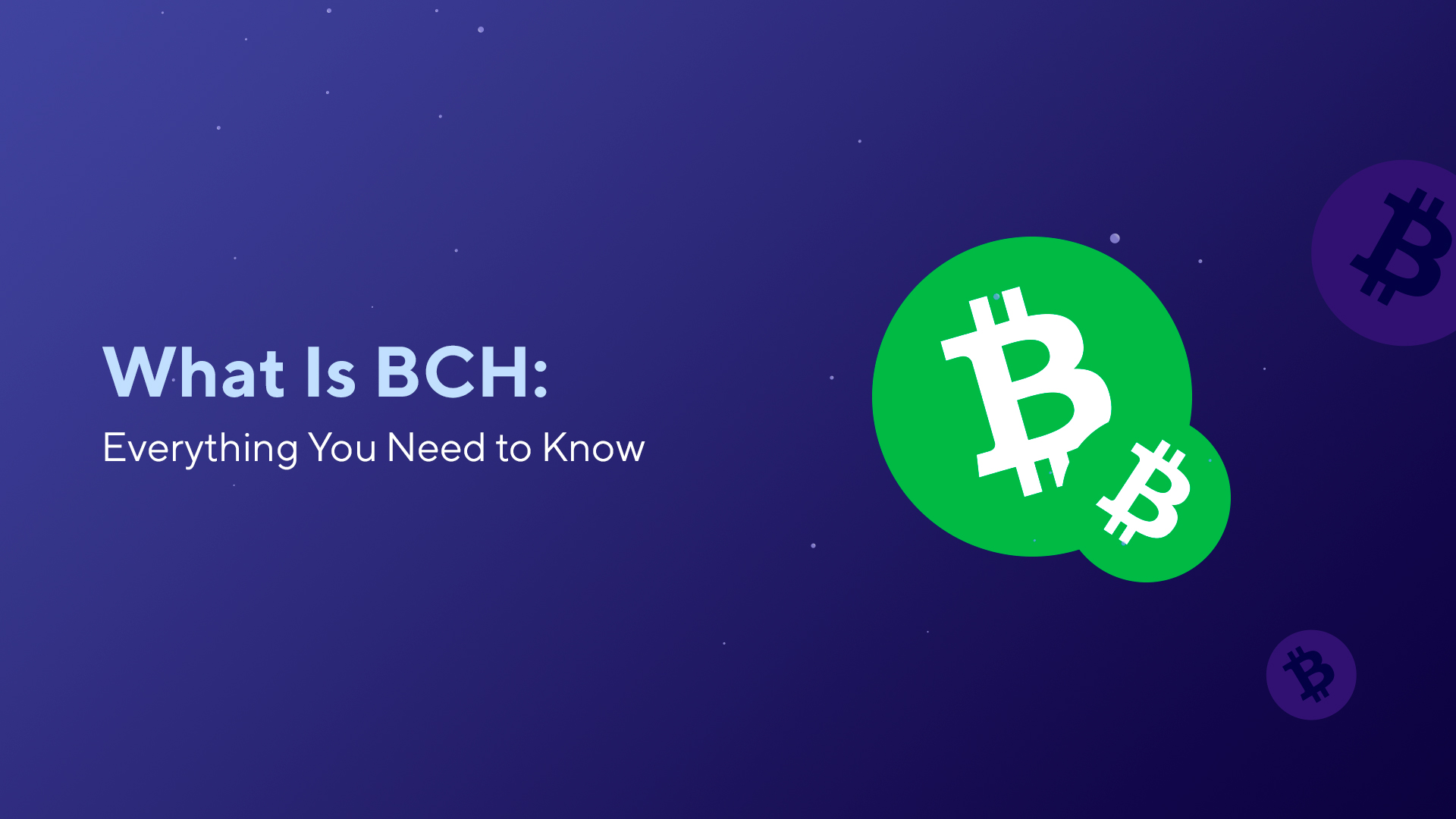 What Is BCH: Everything You Need to Know