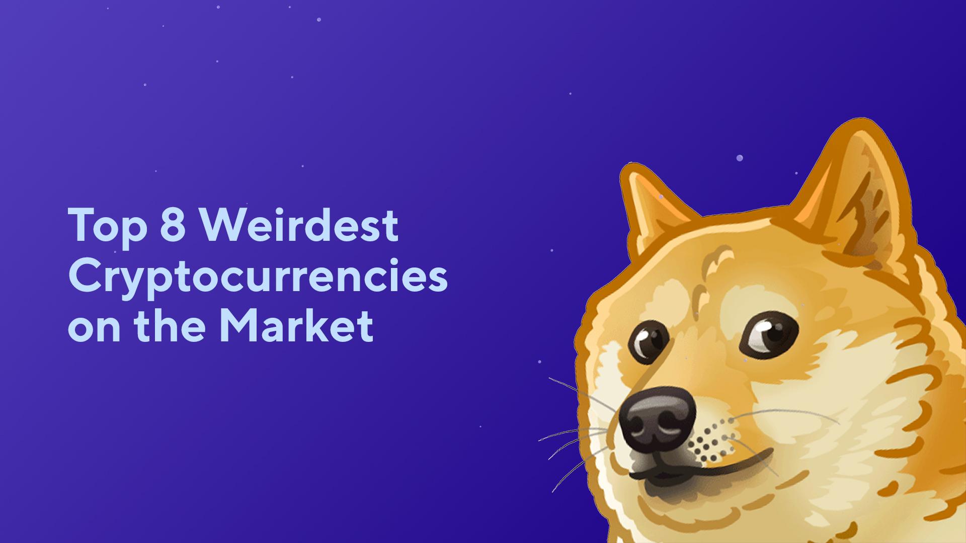 Top 8 Weirdest Cryptocurrencies on the Market